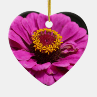 Common zinnia (Zinnia elegans) Ceramic Heart Ornament