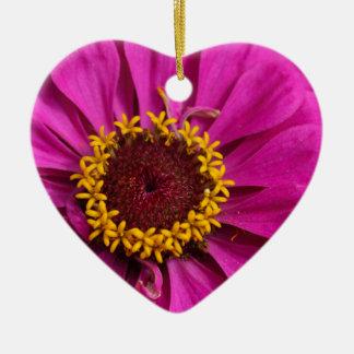 Common zinnia (Zinnia elegans) Ceramic Heart Ornament