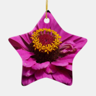 Common zinnia (Zinnia elegans) Ceramic Star Ornament