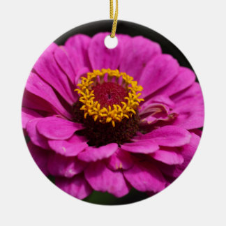 Common zinnia (Zinnia elegans) Round Ceramic Ornament