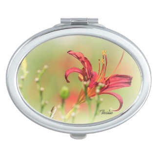 Compact miror travel mirror