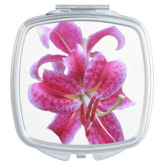 Compact Mirror--Stargazers Makeup Mirrors