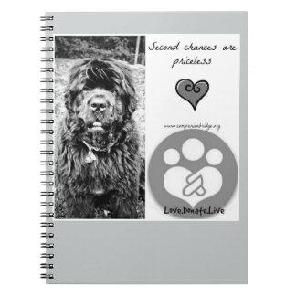 CompanionBridge Oliver Notebooks