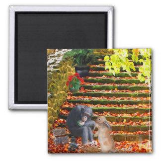 Compassion Chimpanzee & Rabbit Magnet