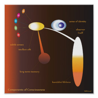 Components of Consciousness Poster