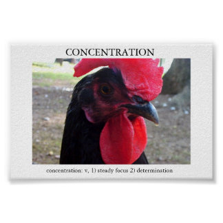 Concentration Poster