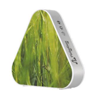 conception abstraite extérieure naturelle verte haut-parleur bluetooth