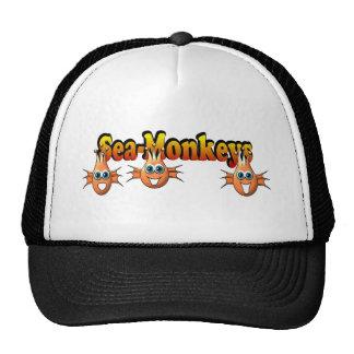 Conception de Monkees de singes de mer Casquettes