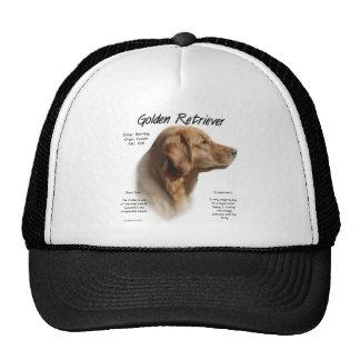 Conception d'histoire de golden retriever casquettes