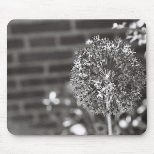 Conception impuissante de photo de fleur tapis de souris