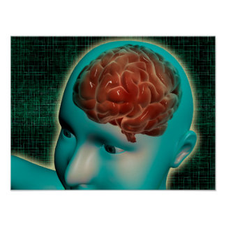 Conceptual Image Of Female Body With Brain 1 Poster