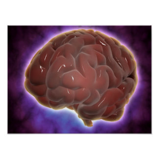 Conceptual Image Of Human Brain 6 Posters