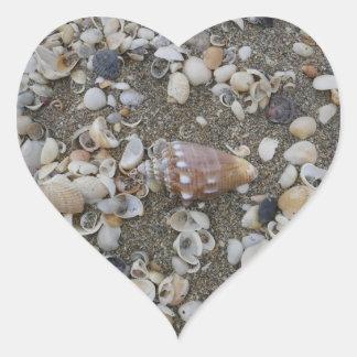 Conch Seashell Treasure Heart Sticker
