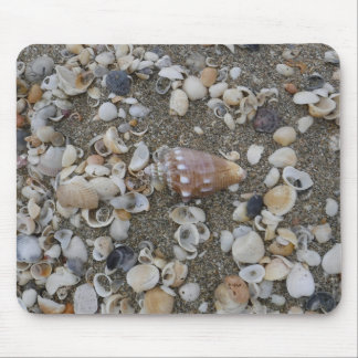 Conch Seashell Treasure Mouse Pad