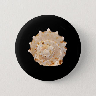 Conch Shell Badge 2 Inch Round Button