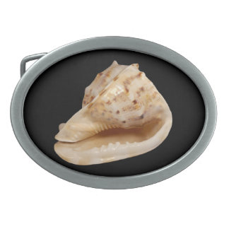Conch Shell Belt Buckle