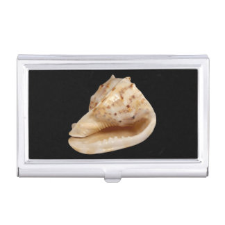 Conch Shell Business Card Holder