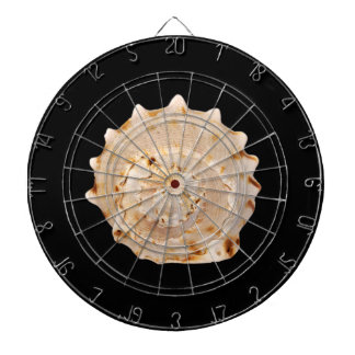 Conch Shell Dart Board