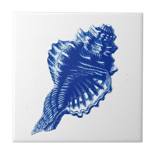 Conch Shell, Indigo Blue and White Tile