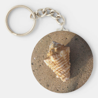 Conch Shell Keychain (Color)