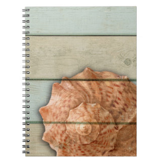 Conch Shell Notebooks