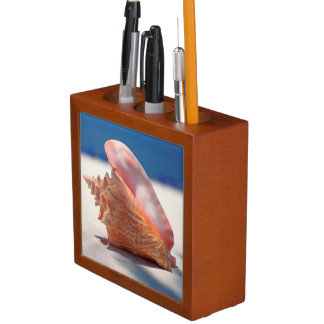 Conch Shell On Beach 2 Pencil Holder