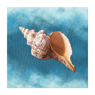 Conch Shell on Canvas