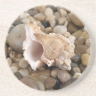 Conch Shell on Pebbles Coaster
