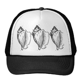 Conch Shell Sketch Trucker Hat