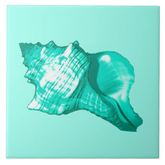 Conch shell sketch - turquoise, white and aqua tile