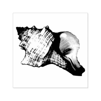 Conch Shell Vintage Illustration Self-inking Stamp