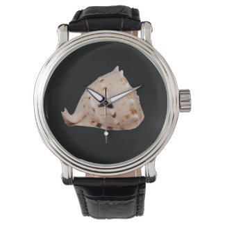 Conch Shell Watch