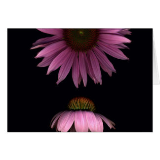 Cone Flowers Card