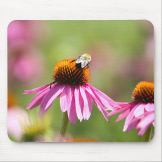 Coneflower and Honey Bee Mouse Pad