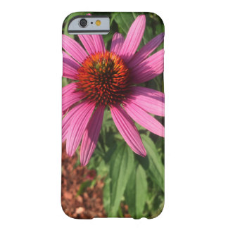 Coneflower Barely There iPhone 6 Case