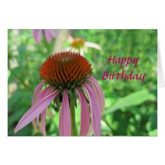 Coneflower Birthday Card