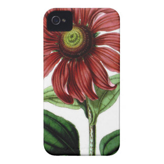 Coneflower Case-Mate iPhone 4 Case