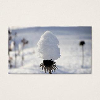 Coneflower (Echinacea) Winter Garden Business Card