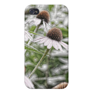 Coneflower Frost iPhone 4/4S Cases