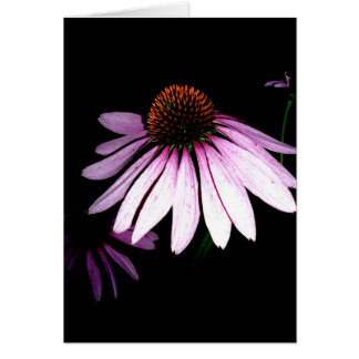 Coneflower Note Card