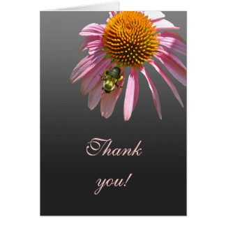 Coneflower Thank You Card