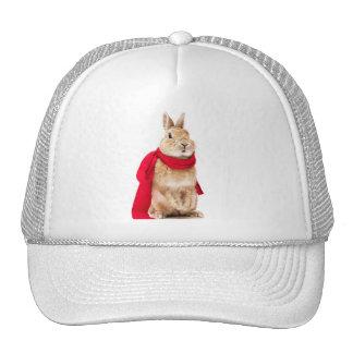 conejito cap superman trucker hat
