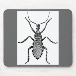 Conenose Bug - Vintage Mouse Pad