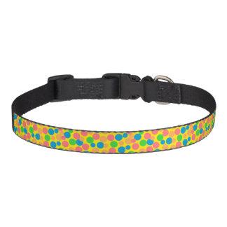 """Confetti""Dog Collar"