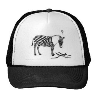 Confused Zebra Mesh Hats