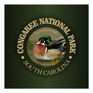 Congaree National Park (Wood Duck) Poster