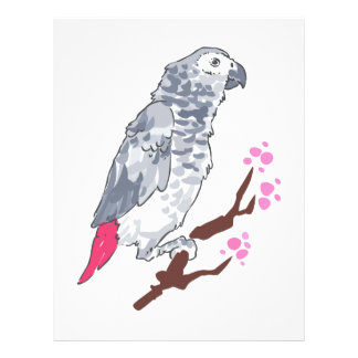 CONGO AFRICAN GREY PARROT CUSTOMIZED LETTERHEAD