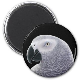 Congo African Grey Parrot Magnet