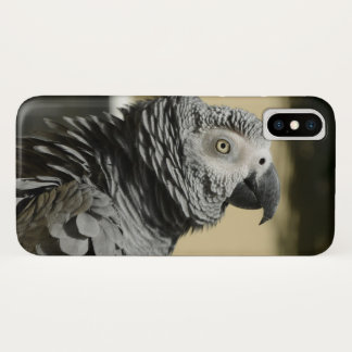 Congo African Grey Parrot with Ruffled Feathers iPhone X Case