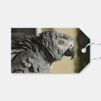 Congo African Grey Parrot with Ruffled Feathers Pack Of Gift Tags